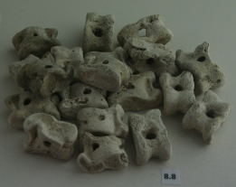 Ancient knucklebones from Taranto South Italy