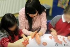Εργαστήριο στο Ευρωπαϊκό Σχολείο του Δουβλίνου